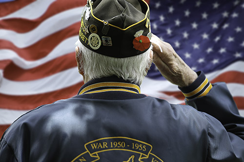 Preparing Your Senior Loved One for Memorial Day - Villa Rica, GA